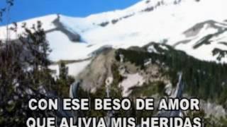 Alejandro Fernández & Gloria Estefan - En el Jardín karaoke letra lyric