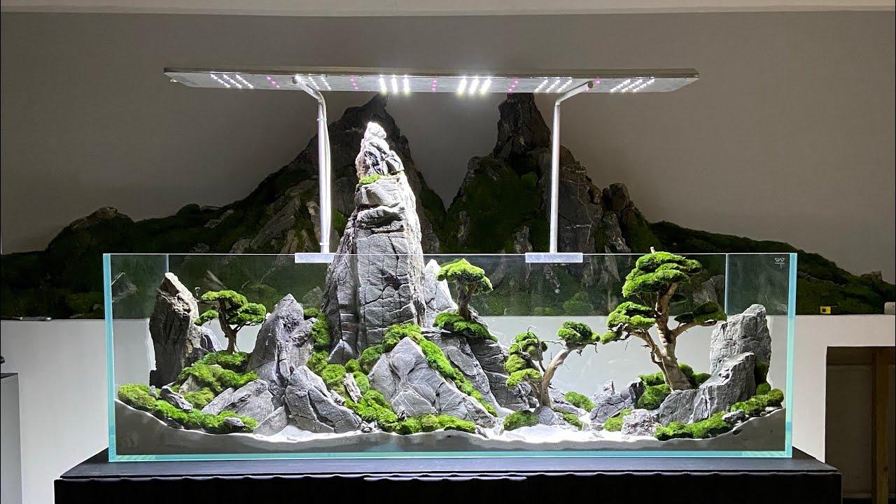 Aquarium Mountain Style