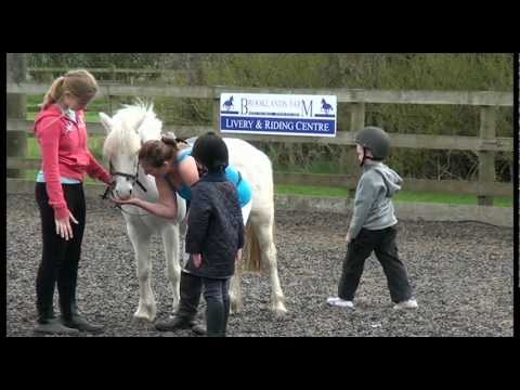 Brooklands Farm Liverpool Merseyside Youtube
