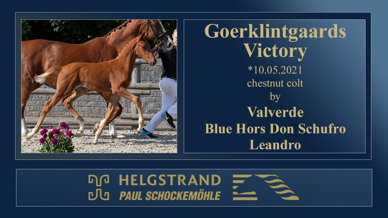 17 Goerklintgaards Victory by Valverde - Don Schufro - Leandro - YouTube