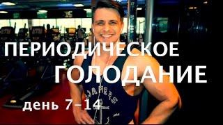 Периодическое голодание, день 7-14, мои -10 кг за 60 дней, лучшее упражнения для жиросжигания !