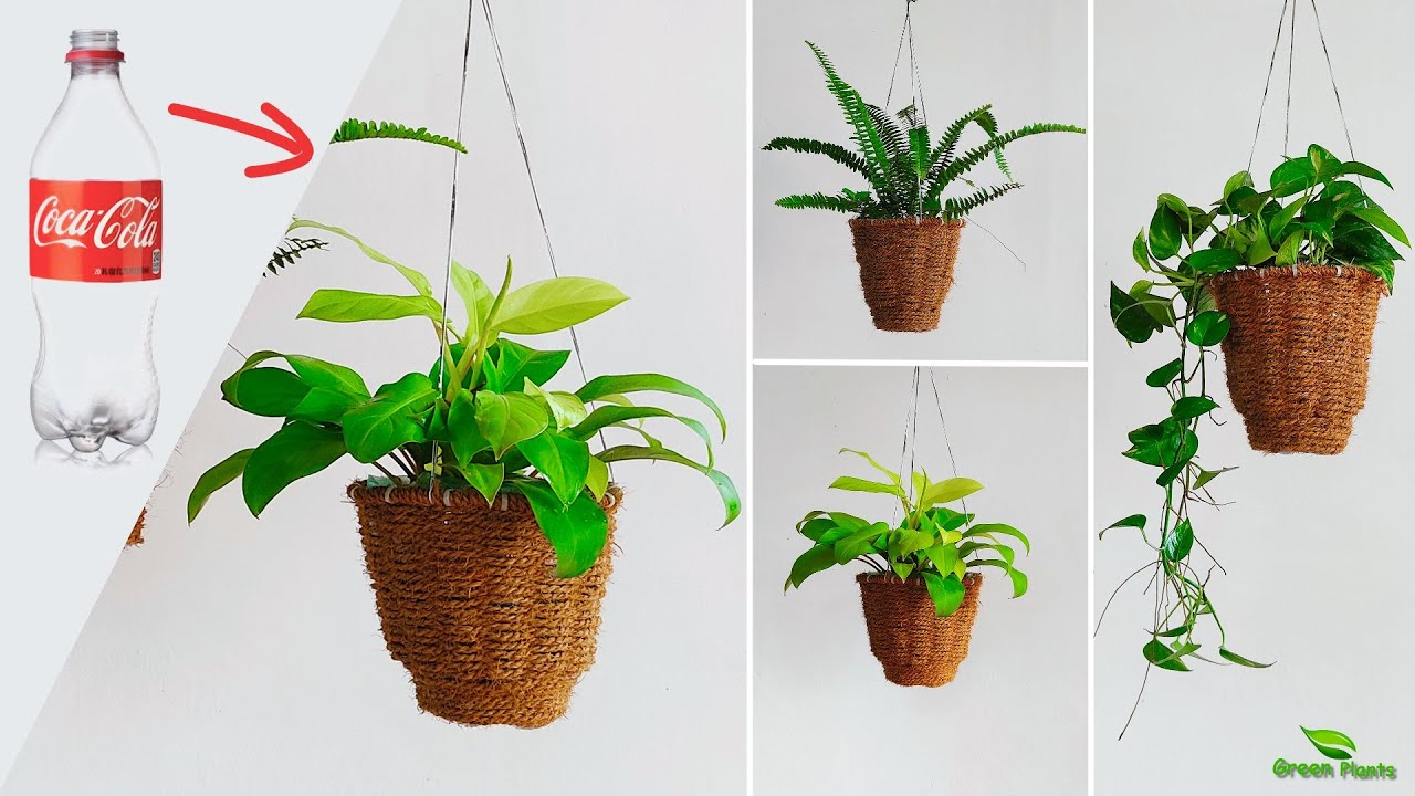 Recycling Plastic Bottles into Beautiful Hanging Baskets   Unique Hanging Planter Idea//GREEN PLANTS