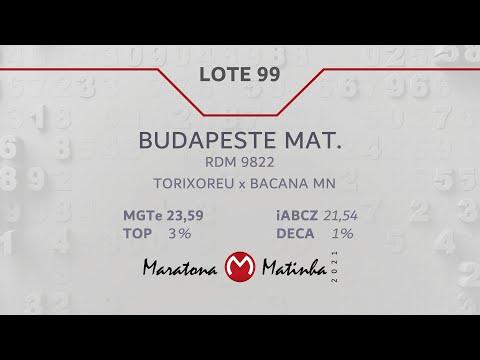 LOTE 99 Maratona Matinha