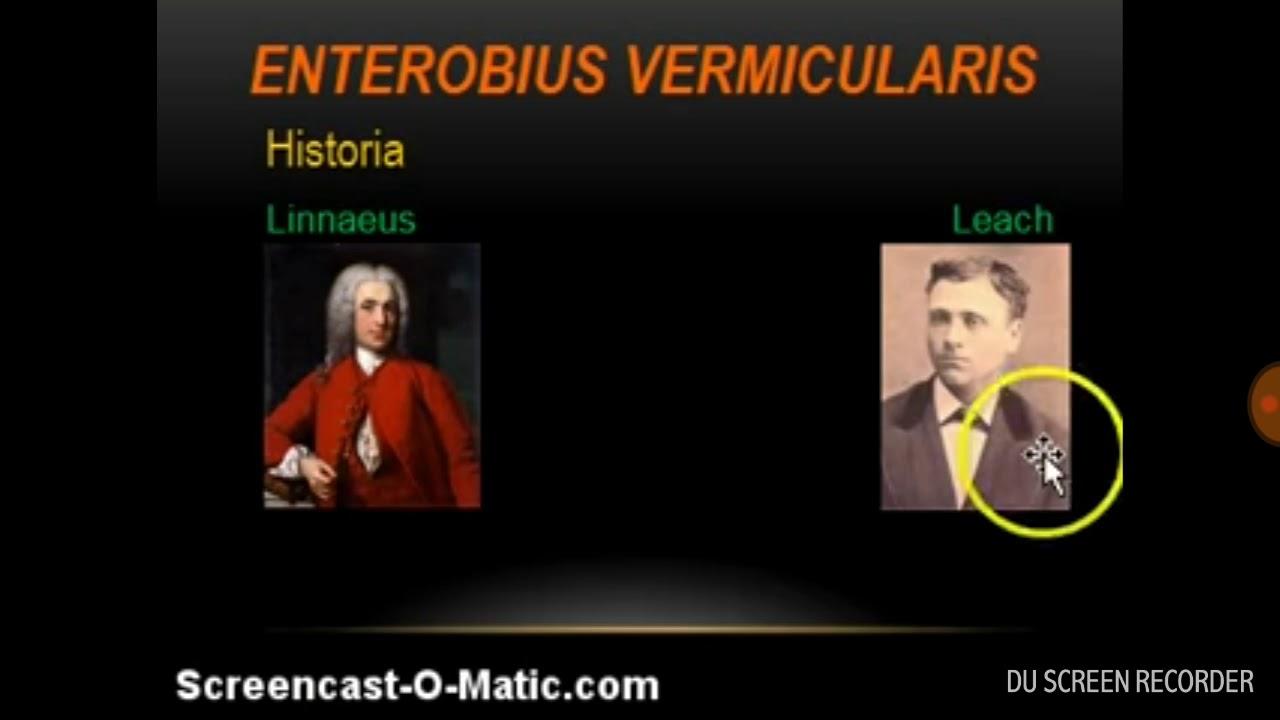 enterobius vermicularis historia)