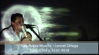 Naturaleza Muerta Leo Ortega