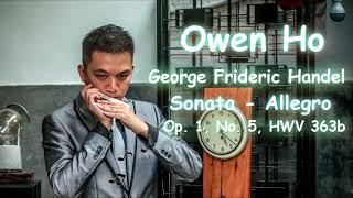Sonata - Allegro - Owen Ho