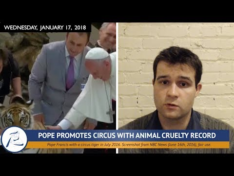 WORLD NEWS: Pope on Circuses, Animal Rights in Pakistan, & More! (1/15/18)