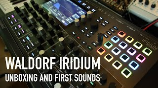 Waldorf Iridium - Unboxing and first ambient sounds