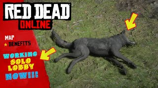 ONLY WAY TO PLAY RED DEAD ONLINE CURRENTLY - TEMP SOLO LOBBY METHOD