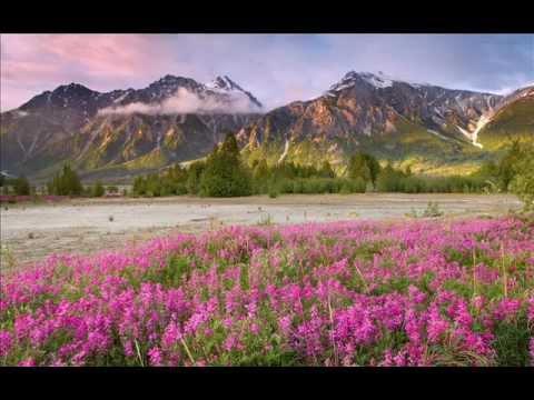 Talib al Habib -- Song of the Wayfarer Album-- Travelling Light
