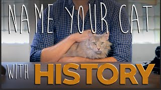 How to Name Your Cat Using History