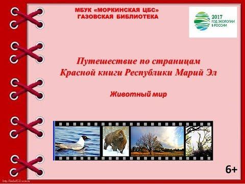 Путешествие по страницам  Красной книги Республики Марий Эл
