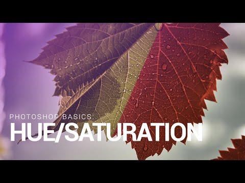 Photoshop Basics: The Power Of Hue/Saturation