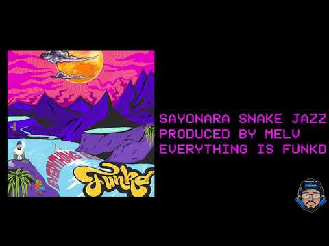 Download EVERYTHING IS FUNKD (BEATTAPE)