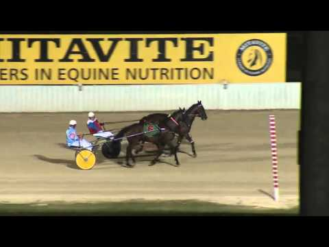NEWCASTLE - 27/02/2016 - Race 7 - NBN TELEVISION PACE