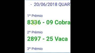 JOGO DO BICHO SEGREDO REVELADO E COMPROVADO zap  081  98217-4395
