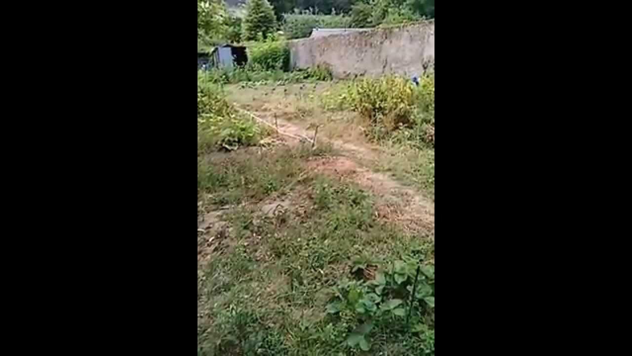 commencer un nouveau jardin entretien youtube
