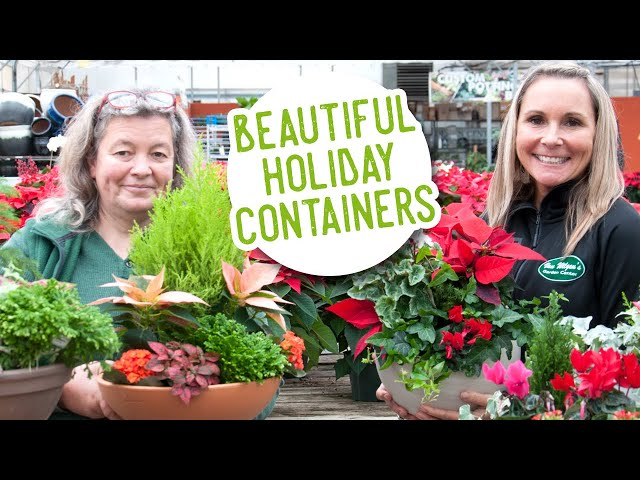 Beautiful Holiday Containers