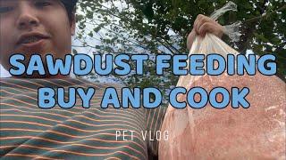 SAWDUST FEEDING FOR MY DOGS