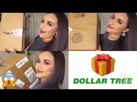 INTERCAMBIO DOLLAR TREE Y COSAS ECONOMICAS FT. JACKIEBEAUTY TRIZ
