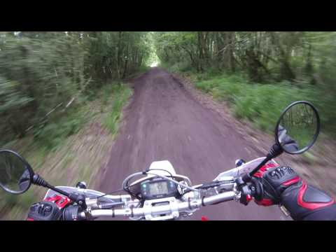 Test Ride SWM RS500R full race mapping