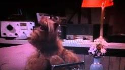Alf - Null Problemo