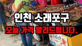 인천 수산시장 소래포구를 방문하여 수산물의 가격을 확인…