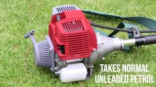 Eckman 4-Stroke Professional Brush Cutter/Grass Trimmer