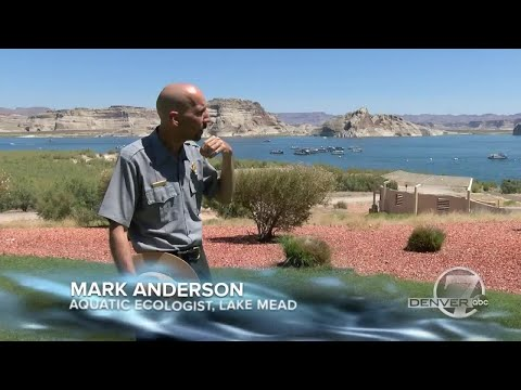 Take a 1,450 mile journey along the Colorado River