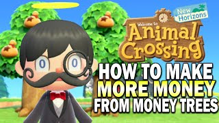 This Money Tree Trick Will Change Your Life In Animal Crossing New Horizons