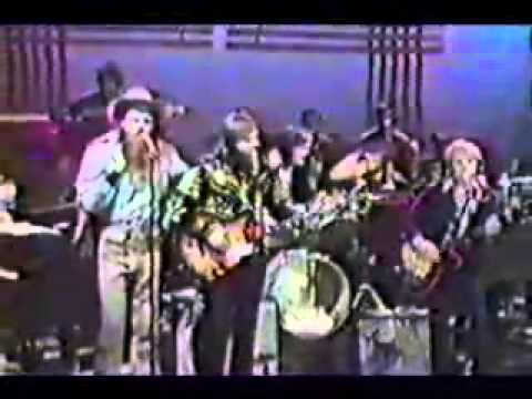 The Beach Boys  Cool cool water live 1971
