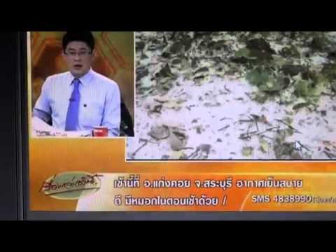 today THAI news TV