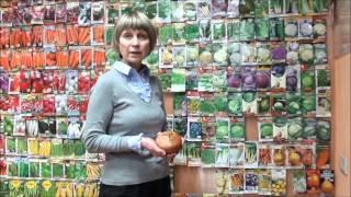 Лук репчатый из семян.(Сорта лука репчатого из семян за один год., 2013-12-25T01:39:47.000Z)