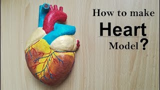 How to make Human Heart Model | Part 1/2