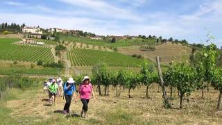 Tuscany & Umbria with The Wayfarers Walking Vacations