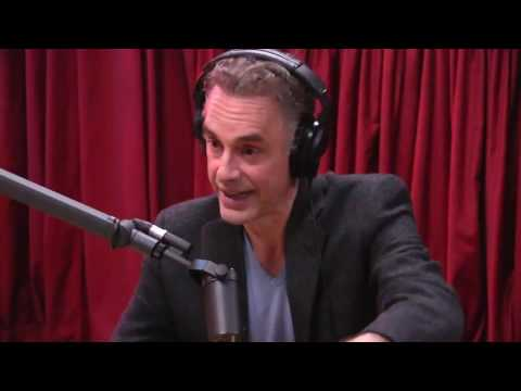 Jordan Peterson Explains the Male Dominance Hierarchy - The Joe Rogan Experience