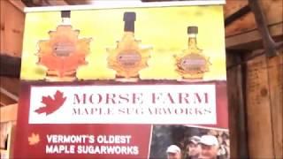 Как делают кленовый сироп ! ( Maple syrup ! )