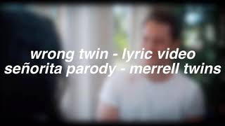 wrong twin lyric video | señorita parody - merrell twins