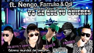 Yo Se Que Tu Quieres Remix - Farruko ft Ñengo Flow ft Opi Ft Falsetto & Sammy