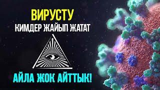 Вирус акыйкаты (анимациялык ролик)