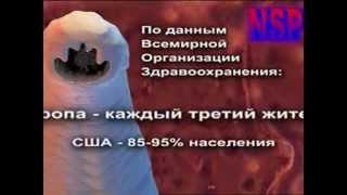 Фильм паразиты в организме человека - Признаки паразитов в человеке - Видео о паразитах внутри нас(http://www.nsp.lv/publ/7-1-0-158 Думаете вас это не касается? Когда Вы видите эти ужасающие кадры, Вы, наверное, говорите:..., 2015-05-25T11:42:03.000Z)