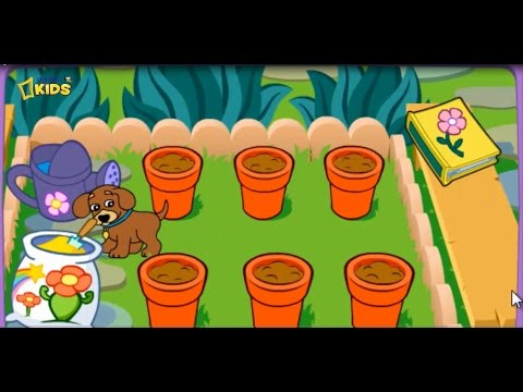 Dora The Explorer Dora S Magical Garden Dora Games For