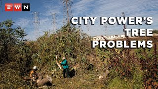 City Power has its work cut out for it in dealing with the vegetation growing and encroaching on servitudes alongside power lines, thus interrupting its ability to supply electricity to its customers.  #CityPower #ElectricitySupply #TreeCulling