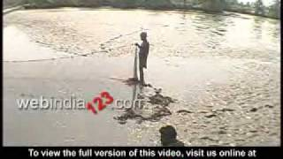 Back water fish cultivation in Kerala