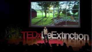 How to Bring Passenger Pigeons All the Way Back: Ben Novak at TEDxDeExtinction