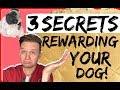 How to properly reward your dog-  3 Secrets to dog training!