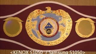 hand crafted wbo world championship boxing belt