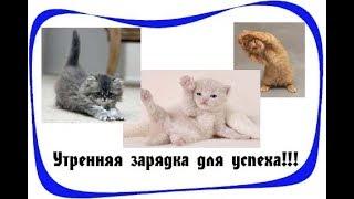 дЖИЛИАН МАЙКЛС 2 УРОВЕНЬ СМОТРЕТЬ ОНЛАЙН
