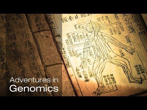 Traditional medicine: A new look at nature's treasures| Adventures in Genomics