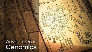 Traditional medicine: A new look at nature's treasures  Adventures in Genomics